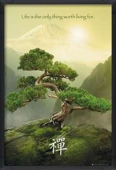 Inramad poster Zen