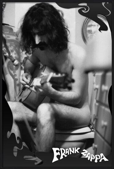 Poster  Frank Zappa - guitar