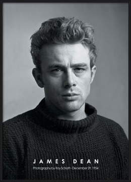 Poster  James Dean - portrait b&w