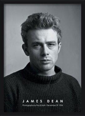Poster  James Dean - portrait b&w